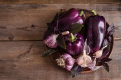 Dark purple peppers with leaves of basil and garlic on old rustic wooden table stock photography