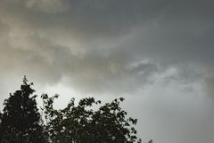 Dark rain clouds forming above trees stock images