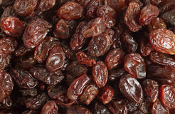 Dark raisins background Royalty Free Stock Image