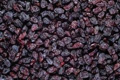 Dark raisins background Royalty Free Stock Photos