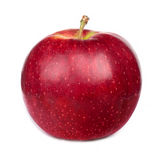Dark-red apple Royalty Free Stock Image