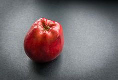 Dark-red apple. Royalty Free Stock Image