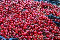 Dark red cherries Royalty Free Stock Photography
