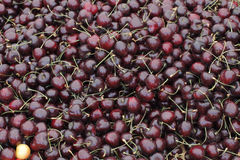 Dark Red Cherries For Sale Stock Images