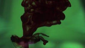 Dark red dye drops stock video footage