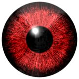 Dark red eye Stock Image