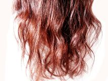 Dark red hair wave Royalty Free Stock Photo