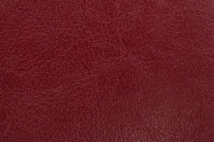 Dark red leather texture background. Closeup photo. Stock Images
