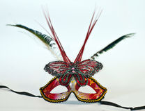Dark red mask with feathers and butterfly. Isolated white Stock Image