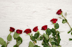 Dark red rose on a light wooden background at the edge of the frame, top view. Space for text Stock Photography