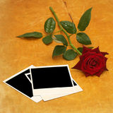 Dark red rose and old photos on wood Stock Photo