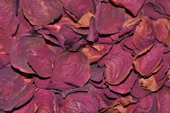 Dark Red Rose Petals Dried For Bath, Tea, Skin, Oil Infusion. Dark red dried rose fragrant petals close up - raw materials for perfumery, cosmetology, spa for Stock Photo