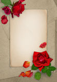 Dark red roses and petals on the old paper. Grunge card. Place for text. Flat lay. Dark red roses and petals on the old paper. Grunge card. Place for text. Top Royalty Free Stock Images