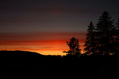 Dark red sunset with pine cone trees silouhette. A late sunset red to orange fire color with hills and pine cone trees shadows in canada Stock Photography