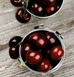 Dark Red Sweet Cherries royalty free stock image