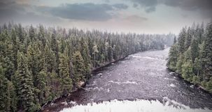 Dark river into forest royalty free stock photo