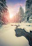 Dark river in the winter mountain forest. Royalty Free Stock Photo