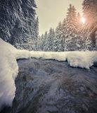 Dark river in the winter mountain forest at sunset. Stock Image