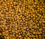 Dark Roast Beans Stock Images