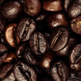 Dark Roasted Black Coffee Beans as Background, Wallpaper, Poster Stock Photography