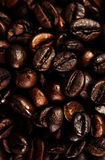 Dark Roasted Black Coffee Beans as Background, Wallpaper, Poster Stock Photos