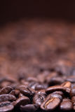 Dark roasted coffee beans background Royalty Free Stock Photo