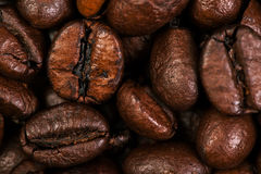 Dark Roasted Coffee Beans Caffeine Brown Espresso wallpaper close up. Fried Coffee Beans Texture macro royalty free stock images