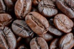 Dark roasted coffee beans Royalty Free Stock Image