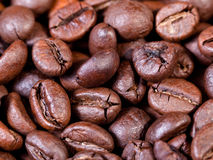 Dark roasted coffee beans close up Royalty Free Stock Image