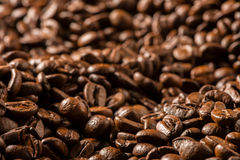 Dark Roasted Coffee Beans Close Up. Background Dark Roasted Coffee Beans Close Up Royalty Free Stock Photo