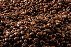 Dark Roasted Coffee Beans Close Up Royalty Free Stock Photography