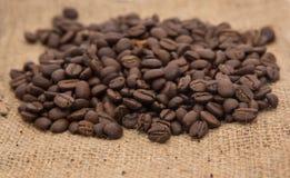 Dark roasted coffee beans Stock Photos