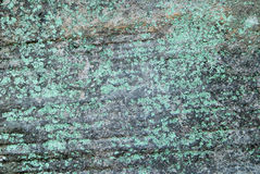 Dark Rock with green lichen Royalty Free Stock Photography