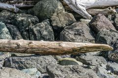 Dark Rocks And LIght Driftwood 2. Light driftwood sits on top of dark boulders royalty free stock photo