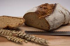 Dark rye bread Royalty Free Stock Image