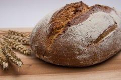 Dark rye bread Stock Images