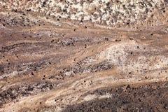 Dark sand surface after the rain Stock Photos