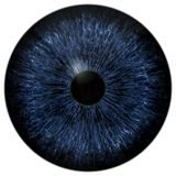 Dark scary blue eyeball, animal and human eye royalty free illustration