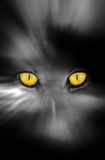 Dark scary eyes Royalty Free Stock Image