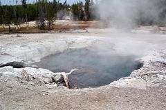 Dark scary Geyser in Norris Geyser Basin in Park Yellowstone.  royalty free stock image