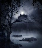 Dark scene. Castle´s shadow on a swamp in a moonlight night