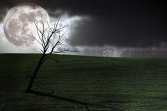 Dark scenery Royalty Free Stock Photo