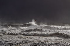 Dark sea storm Royalty Free Stock Image