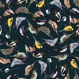Dark seamless pattern birds Stock Photo