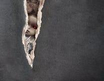 Dark series - vintage spooky doll Stock Images