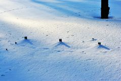 Dark shadows from trees and small pipes in white snow background royalty free stock images