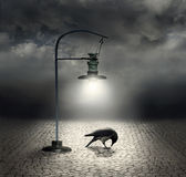 Dark side. Beautiful artistic image with a streetlight that  illuminates a crow and cobblestones with a dark and cloudy sky on the background Royalty Free Stock Images
