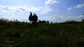 Video of people in the shadow walking on a horse. The concept of family camping, horseback riding and hippotherapy. Dark silhouett. Dark silhouettes for a stock video footage
