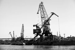 Dark silhouettes of industrial port cranes Stock Images