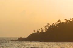 Dark silhouettes of palm trees stock photo